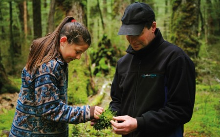 A Dart River Jet guides discusses flora and fauna