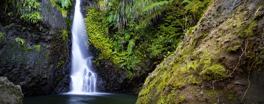 Karamatura Falls Waitakere Ranges by Geoff DunneWhite Cloud Travel